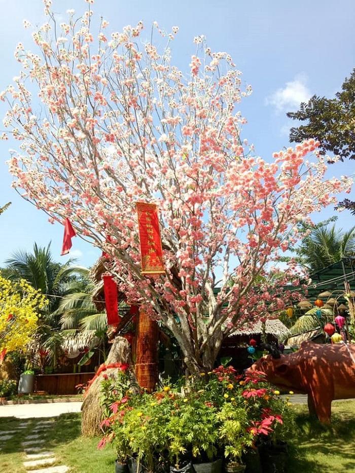 Phong Điền – Cần Thơ với các điểm tham quan hấp dẫn cùng với nhiều hạng mục vui chơi, giải trí đặc sắc sẽ là địa điểm xứng đáng để du khách cân nhắc lựa chọn cho kỳ nghỉ Tết năm nay.